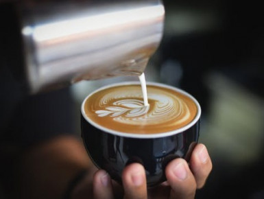 Coffee Shop Business for Sale Windsor Gardens