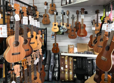 Online Music Tuition and Retail Store Business for Sale Brisbane