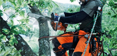 Tree & Garden Maintenance Business for Sale Mooroolbark Melbourne
