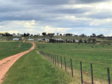 Piggery Food Manufacturing Business for Sale NSW