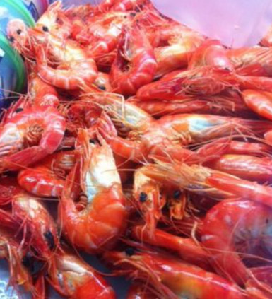 Wholesale Seafood Distribution Business for Sale Newcastle