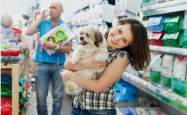 Pet Retail Shop and Produce Supply Business for Sale Noosa QLD