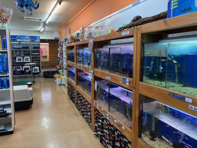 Pet Shop Business for Sale Gympie QLD