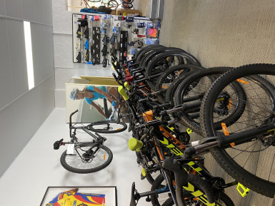 Bicycle Retail Business for Sale Sydney