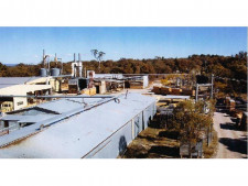 Freehold Sawmill  Business  for Sale