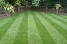 Artificial Lawn  Business  for Sale