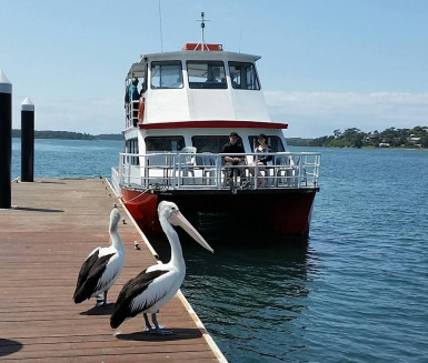 River Cruise Business for Sale Nowra NSW