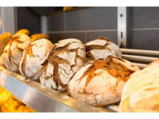 Bakery Cafe Food  Business  for Sale