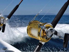 Fishing Equipment and Accessory  Business  for Sale