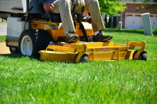 Garden Maintenance  Business  for Sale