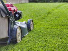 Lawn and Garden Services  Business  for Sale