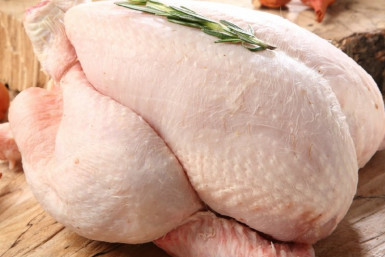 Chicken Processing Plant  Business  for Sale