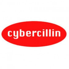 Cyber Security  Business  for Sale