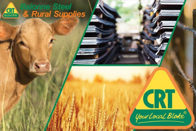CRT Rural Supplies & Steel  Business  for Sale