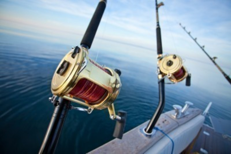 Fishing Boat and Fresh Fish Sales Business for Sale Queenscliff VIC