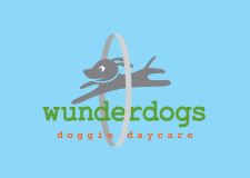 Doggie Day Care  Business  for Sale