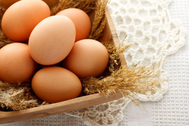 Egg Distribution  Business  for Sale