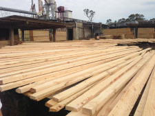 Freehold Sawmill Business for Sale Stanthorpe Queensland