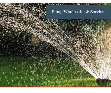 Pump Wholesaler & Repairs  Business  for Sale