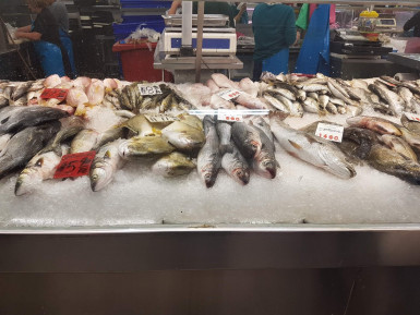 Fresh Fish Shop  Business  for Sale