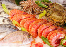 Fresh Seafood and Grocery Shop Business for Sale Brisbane