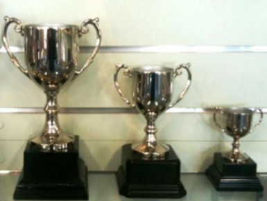 Trophies and Awards  Business  for Sale