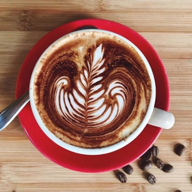 Profitable Cafe  Business  for Sale