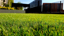 Lawn Care and Maintenance Franchise Business for Sale New South Wales